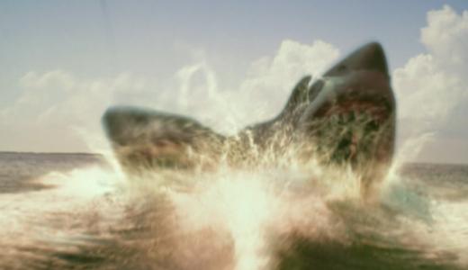 【〇〇ヘッド・ジョーズ】多頭サメ!あらすじ&見どころを解説!【サメ映画特集①】